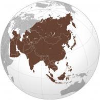 Купить лучшие сорта кофе в зернах из Азии: